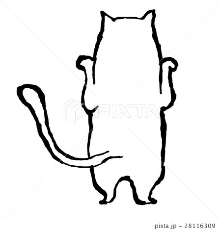 白猫 28116309