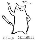 白猫 28116311