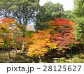 尾関山公園 28125627