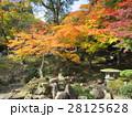 尾関山公園 28125628