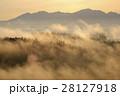 朝霧の丘 28127918