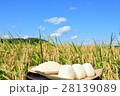 秋の青空 田んぼと新米のおにぎり 28139089
