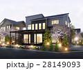 住宅夜景 桜 28149093