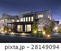 住宅夜景 桜 28149094