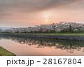 満開で美しい桜 28167804