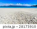 ビーチ 海 浜の写真 28173910