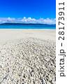 ビーチ 海 浜の写真 28173911