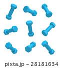 ブルー 青 ダンベルのイラスト 28181634