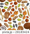 Nut, bean, seed and wheat seamless pattern 28183424