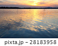 涸沼の夕景 28183958