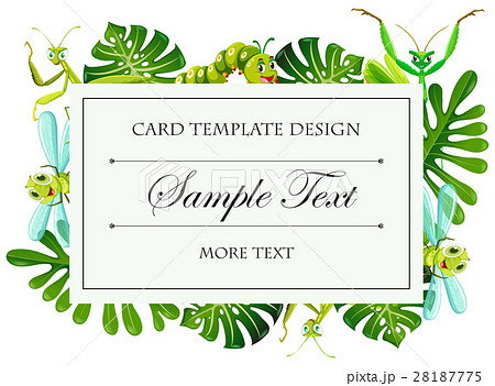 card template with insects and leaves frameのイラスト素材 28187775