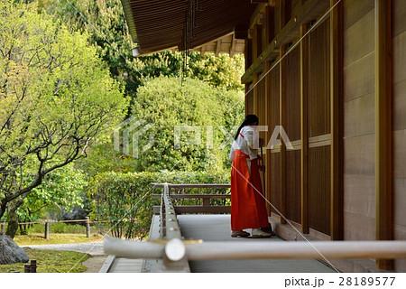 神社と神子 28189577