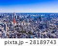 東京シティビュー 青空と東京タワー 28189743