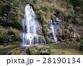 大分県竹田市 白水の滝 28190134