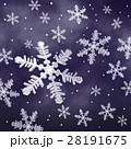 Snow Crystal 28191675