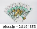 お金 お札 ルーブルの写真 28194853