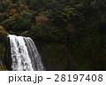 音止めの滝 28197408