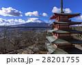 富士山 新倉山浅間公園 冬の写真 28201755