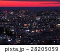 8月沖縄 首里城・西のアザナから見た夜景 28205059