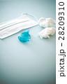 花粉症 28209310