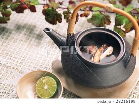 松茸の土瓶蒸し 28216199