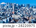 都市風景 都会 東京の写真 28220975