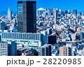 都市風景 都会 東京の写真 28220985