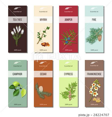 essential oil labels collection tea tree myrrhのイラスト素材