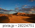 砂漠 サハラ砂漠 大砂丘の写真 28224751