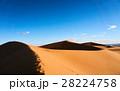 砂漠 サハラ砂漠 大砂丘の写真 28224758