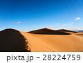 砂漠 サハラ砂漠 大砂丘の写真 28224759