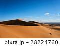 砂漠 サハラ砂漠 大砂丘の写真 28224760