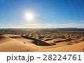 砂漠 サハラ砂漠 大砂丘の写真 28224761