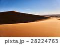 砂漠 サハラ砂漠 大砂丘の写真 28224763