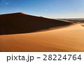 砂漠 サハラ砂漠 大砂丘の写真 28224764