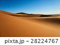 砂漠 サハラ砂漠 大砂丘の写真 28224767