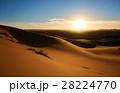 砂漠 サハラ砂漠 砂丘の写真 28224770