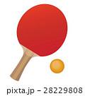 卓球 ラケット ピンポンのイラスト 28229808