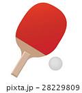 卓球 ラケット ピンポンのイラスト 28229809