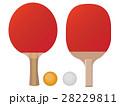 卓球 ラケット ピンポンのイラスト 28229811