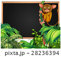 野生動物 野生生物 トロピカルのイラスト 28236394