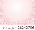 春の光 28242756