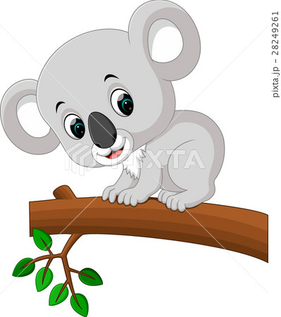 Cute koala cartoon 28249261
