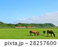 青空 空 北海道の写真 28257600