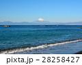 葉山海岸より望む富士山 28258427