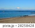 葉山海岸より望む富士山 28258428