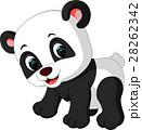ぱんだ パンダ マンガのイラスト 28262342