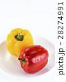 ピーマン 甘唐辛子 甘トウガラシの写真 28274991