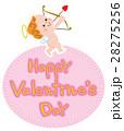 バレンタイン キューピット 天使のイラスト 28275256