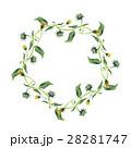 水彩画 花輪 フレームのイラスト 28281747